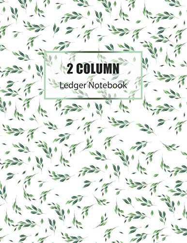 2 Column Ledger Book: Accounting Ledger Notebook | Business Financial Bookkeeping | Record Keeping Book | Home School Office Supplies (Accounting Ledger Book)