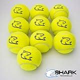10palline da tennis gialle di alta qualità, ideali per divertirsi giocando a tennis o a cricket,...