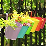 KINGLAKE Flower Pots,10 Pcs Metal Iron Hanging Flower Plant Pots Balcony Garden Plant Planter Baskets Fence Bucket Pots 3.94'' Flower Holders with Detachable Hook