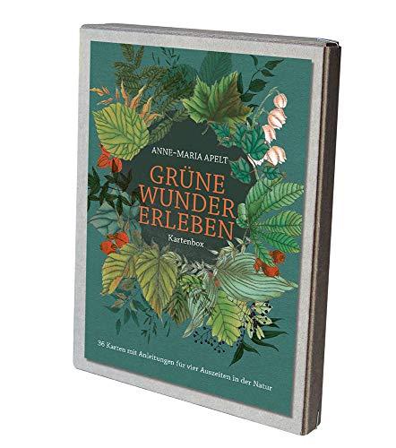Grüne Wunder erleben - Kartenbox: 36 Karten mit Anleitungen für vier Auszeiten in der Natur