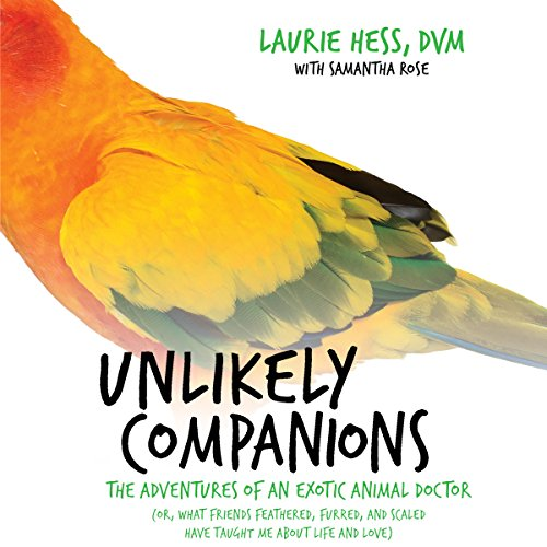 Unlikely Companions audiobook cover art
