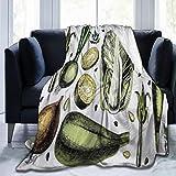 SHENGLIPINK Manta de Microfibra Ultra Suave,Arte Vegetal Popular con Cebolla Repollo Alcachofas Espárragos Dieta Vegana Concepto Bienestar,Decoración para el hogar,cálida Manta para sofá Cama,50'X40'