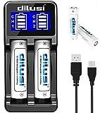 Dilusi P2 Intellicharger Caricabatterie intelligente per batterie agli ioni di litio e NiM...