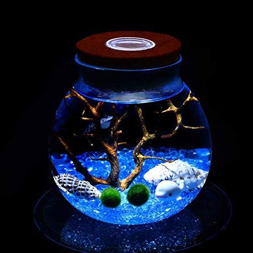 FENGZE 11 CM Rundes Glas Jar Terrarium Mit Buntem LED-Licht Cork Micro Landscape ÖKologische Flasche Nachtlichter # 264310