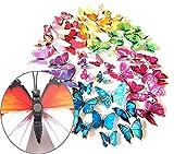 XINGRUI Adhesivos de Pared 2 Sets Creativos 3D Mariposa de Color Adhesivos de Pared Salón Decoración del Dormitorio Suministros, Estilo de imán, Entrega de Colores al Azar