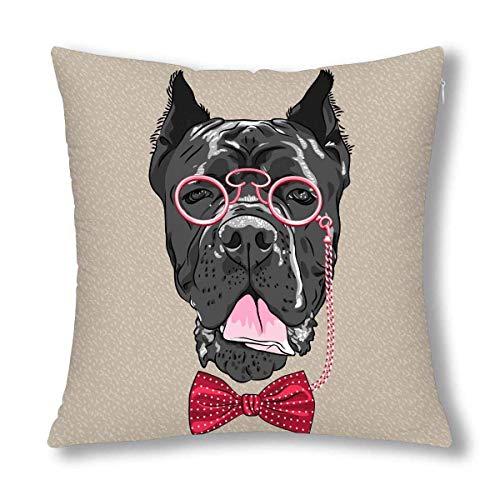 HZLM Funda de cojín con diseño de bastón de perro hipster con gafas y pajarita, 45 x 45 cm, funda de almohada cuadrada decorativa con cierre