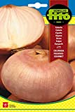 Semillas Fitó 51 - Semillas de Cebolla Colorada Figueras Gourmet