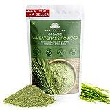 SAPTAMVEDA 100% Organic Wheat Grass Powder | Non-GMO, Vegan, Superfood | Antioxidant, Energy