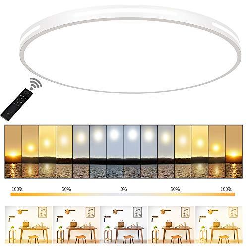 ERWEY 60cm Ultraslim LED Deckenleuchte Rund Deckenlampe Dimmbar Deckenleuchte mit Fernbedienung Lichtfarbe und Helligkeit einstellbar Modern ultradünn Deckenbeleuchtung Dicke 5cm (Weiß Dimmbar, 60cm)