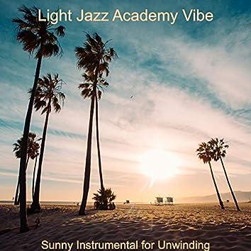 Sunny Instrumental for Unwinding