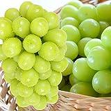 国華園 ぶどう 山梨産 シャインマスカット 約2kg ご家庭用 葡萄 ブドウ