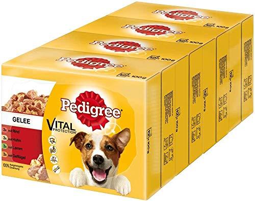 bester der welt Pedigree Adult Wet Food Taschen für erwachsene Hunde – verschiedene Klassen 2021