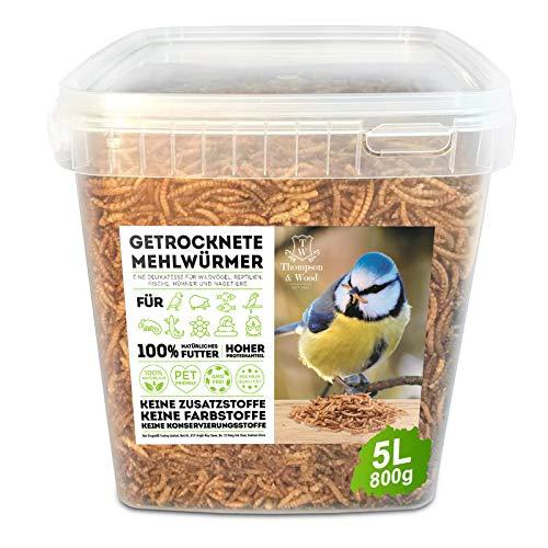 Thompson&Wood Mehlwürmer getrocknet 800gram Eimer, optimales Zusatz Futter für Reptilien, Fische, Vögel & Co