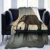 LUCKY Home Manta de forro polar de franela con diseño de elefantes en el barco, tamaño doble, para sofá, cama, sala de estar, extra suave, doble cara, 127 x 101 cm