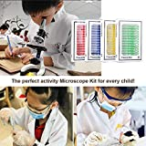 hothuimin KIDS Microscope Slides 48pcs Kids Plastic Prepared Microscope Slides of Animals Insects Plants Flowers Sample Specimens for Stereo Microscopes #2-002