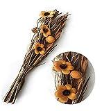 Unishop - Bouquet di fiori secchi naturali colorati, piante secche decorative per interni, bouquet elegante per casa e cerimonie, colore: arancione