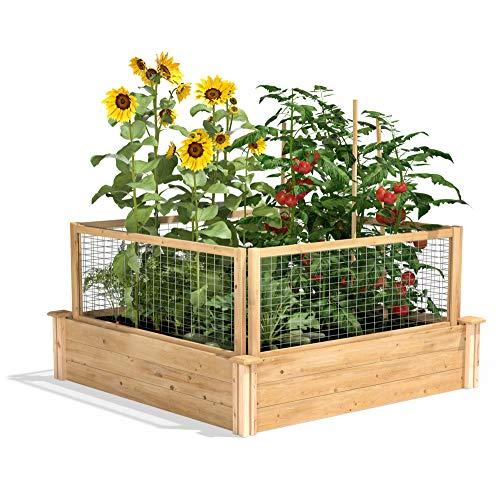 Greenes Fence RC4T12BCG Cedar Raised Garden with CritterGuard Fence System, 48' x 48' x 10.5'