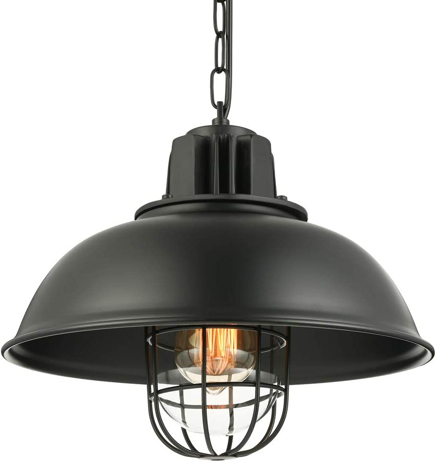 Be super welcome Pendant Light with favorite Cage Shape 13'' Wide Metal Chandelier LITFAD