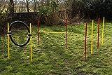 Set agility dog per principianti rosso/giallo...