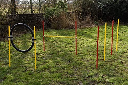 Set agility dog per principianti rosso/giallo