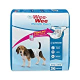 Best Dog Diapers - Four Paws Wee-Wee Disposable Dog Diapers 36 Count Review