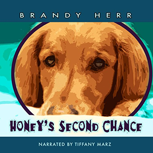 Honey's Second Chance cover art