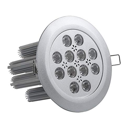 MAONB Proyector LED De Luz De Techo De 36W Joyas De Oro Incrustado Shop Sala De Exhibición De La Tienda De Ropa De Contador De Spotlight (Color : Warm light)