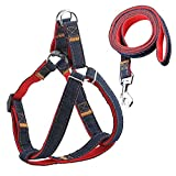 URPOWER Dog Leash Harness Adjustable & Durable Leash Set & Heavy Duty...