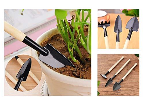 Eva Shop® 3er Set Premium Mini Gartengeräte Gartenwerkzeug Set Schaufel Rechen und Spaten für Mini Gewächshaus, Zimmerpflanzen, Sukkulenten, Kaktus UVM. Versand aus Deutschland durch Deutsche Marke