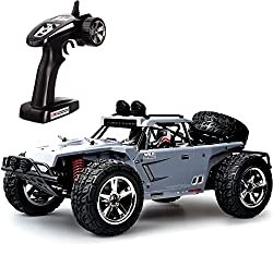 25 Best RC Cars That Are Insanely Fast & Fun! [2019] | Hobby