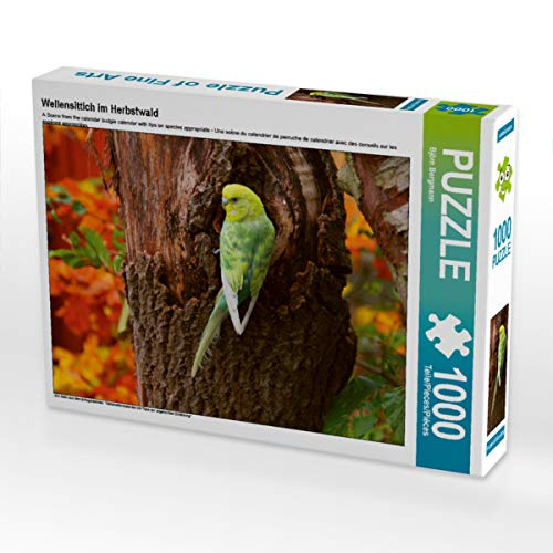CALVENDO Puzzle Wellensittich im Herbstwald 1000 Teile Lege-Größe 64 x 48 cm Foto-Puzzle Bild von Björn Bergmann