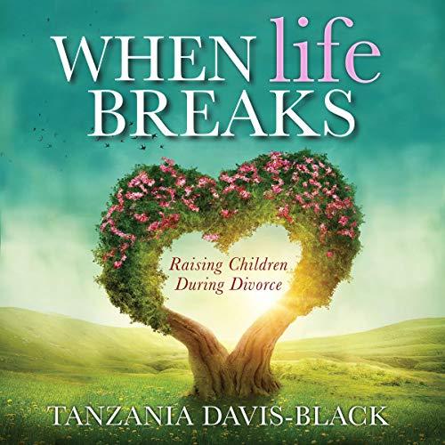 When Life Breaks audiobook cover art