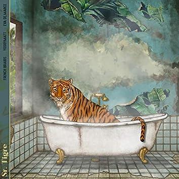 Sr. Tigre (French Braids Rework)