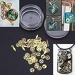 Tebatu Jewelry Accessories,Mini Mixed Steampunk Cogs Gear Clock Charm UV Frame Resin Jewelry Fillings 2 Box 7