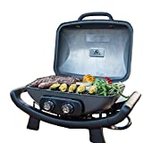Nexgrill Fortress - 2 Burner Cast Aluminum Table Top Gas Grill