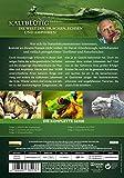 David Attenborough: Kaltblütig – Die Welt der Drachen, Echsen und Amphibien [2 DVDs] - 2