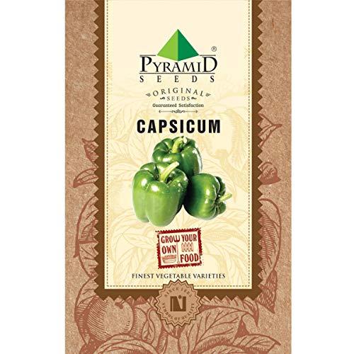 Pyramid Seeds Capsicum Seeds (100 Seeds)