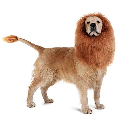 Leeuw Mane Pruik Kostuum voor Hond, DesignerBox Leeuw Pruik Haar voor Medium tot Grote Sized Hond Met Oren & Staart Huisdier Festival Party Fancy Haar Hond Kleding, Dark brown with ears & tail