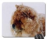 Mauspads - Chow-Chow-Hundeschnee-Hunde- inländisches Haustier-Porträt