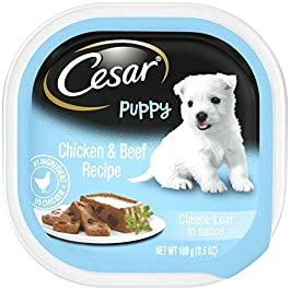 CESAR Puppy Soft Wet Dog Food Classic Loaf in sauce Chicken & Beef Recipe, (24) 3.5 oz. Easy Peel Trays