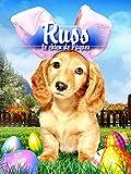 Russ, le chien de Pâques