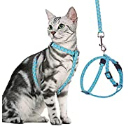 BINGPET Cat Harness and Lead Set Escape Proof - Adjustable Soft Vest Harnesses for walking with Pineapple Pattern, Pet Chest Strap for Small Medium Large Kitten