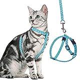 Best Cat Harnesses - BINGPET Cat Harness and Lead Set Escape Proof Review