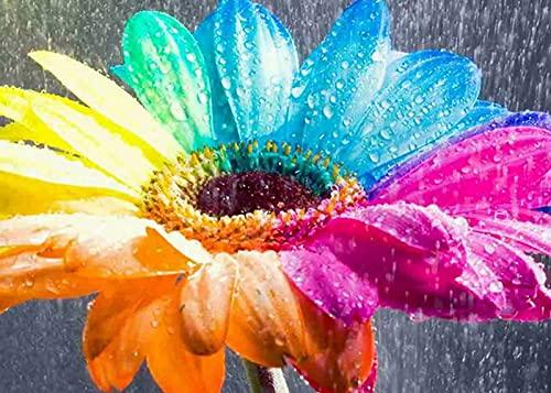 diamond painting fiori Bougimal 5D Diamond Painting Fiore Kit Completo