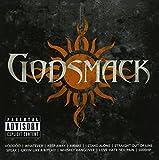 Icon von Godsmack