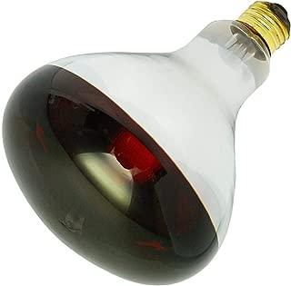 Industrial Performance 35135 - 125R40/10 130V Heat Lamp Light Bulb