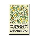 Museum Ausstellung Druck William Morris Blume und Vogel
