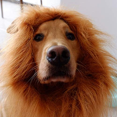 CHICHIC Dog Lion Mane Halloween Lion Mane Wig Costume for Dogs, Make Your Dog Lion, Realistic & Adjustable for Medium to Large Sized Dog with Ears & Tail for Holiday Photo Shoots Party
