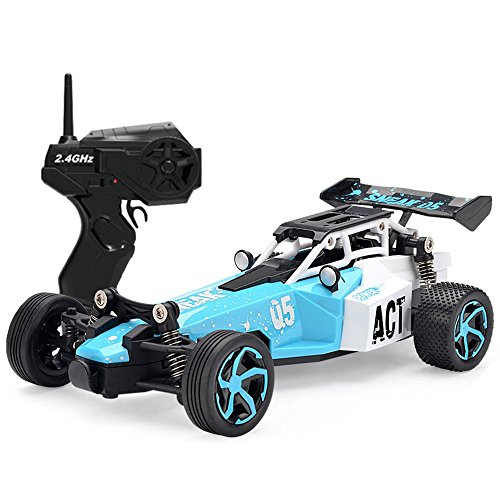 SZJJX RC Car Remote Control Racing Car 2.4Ghz 2WD High Speed Off-Road Vehicle 1:24 Scale Truck Electric Fast Race Buggy Toy For Kids(Blue)
