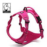TRUE LOVE Adjustable No-Pull Dog Harness Reflective Pup Vest Harnesses Comfortable Control Brilliant Colors Truelove TLH5651(Fushcia,S)
